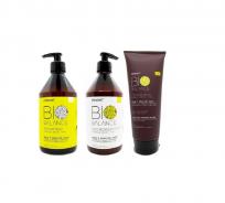 Shampoo + Acondicionador + Máscara Kale Bio Balance Primont